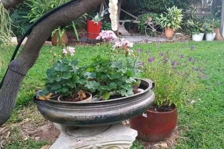 אדנית נחושת לגינה