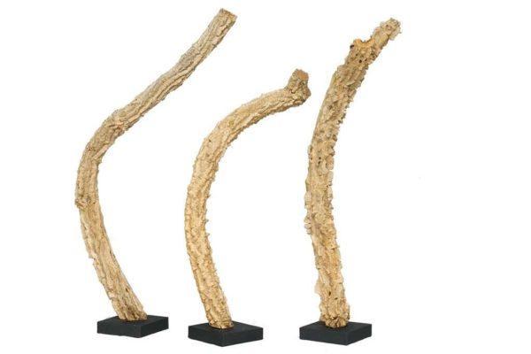 גזעי עץ ישנים לעיצוב