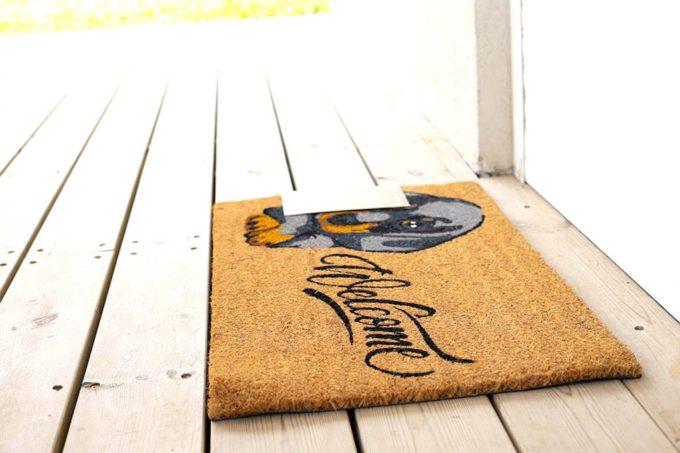 שטיח כניסה כלב