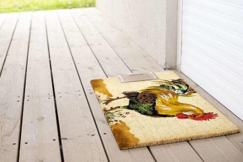 שטיח כניסה צרפתי