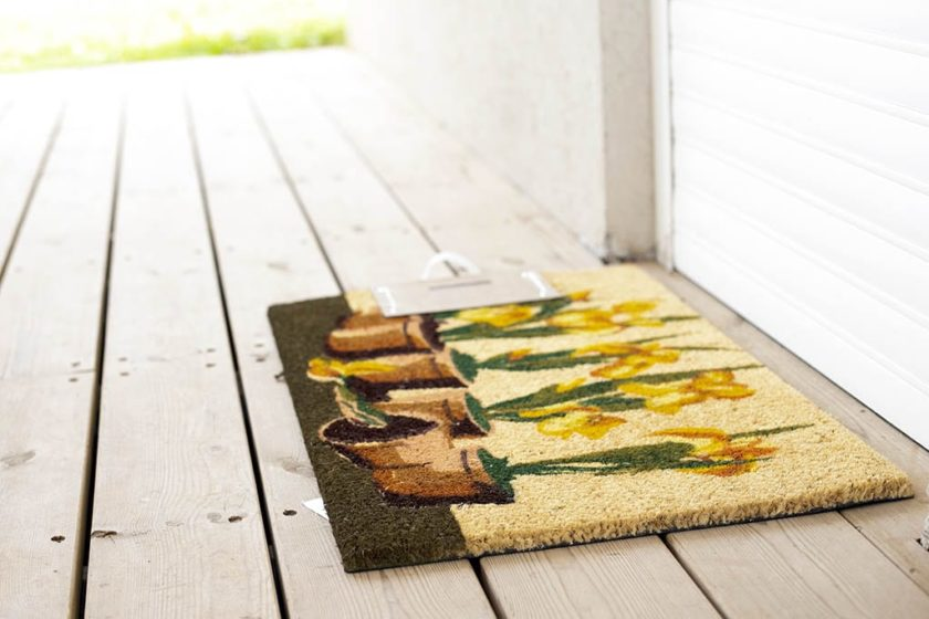 שטיח כניסה עציצים