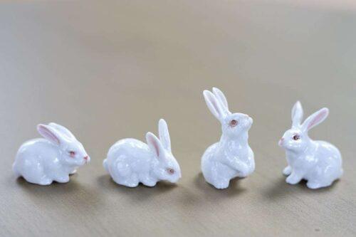 רבעיית ארנבים