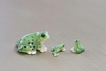 משפחת צפרדעים