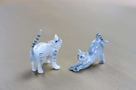זוג חתולים מינאטוריות