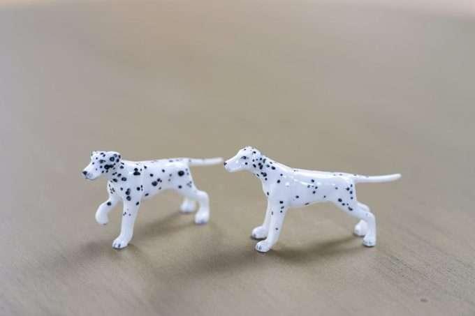 זוג כלבים דלמטים