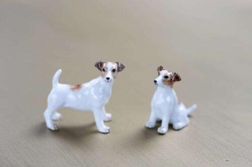 זוג כלבים מגניבים