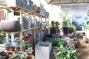 שילוב של צמחייה בעיצוב הבית – מאת משתלת הגן הקסום ברשפון