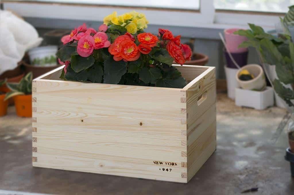 קופסאות מעץ טבעי מלא